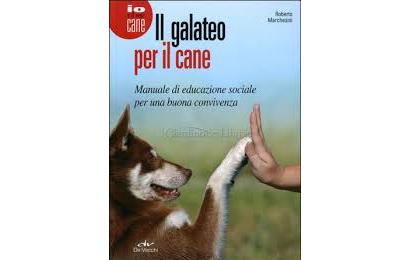 Il galateo per il cane