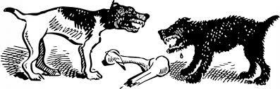 il Valore delle tensioni sociali -tra cani