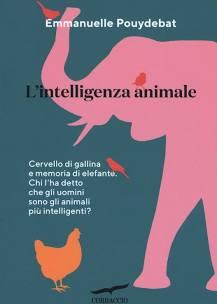 Cervello di gallina e memoria di elefante … chi l'ha detto che gli uomini sono gli animali più intelligenti?